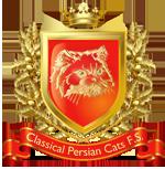 Общество любителей персидских кошек классического типа